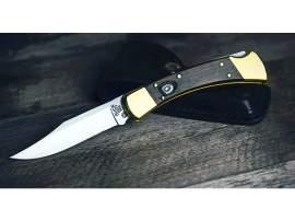 Buck 110 Auto knife